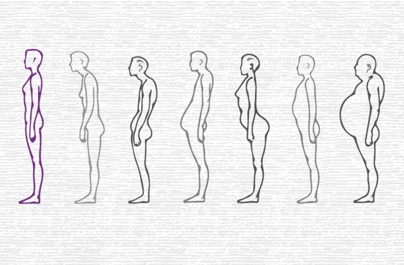 Image Bauchformen